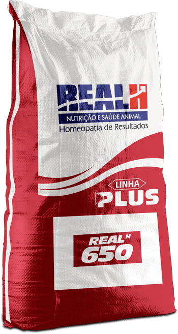 Real H 650